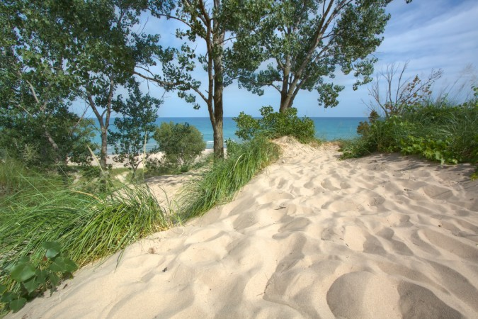 Indiana Dunes State Park